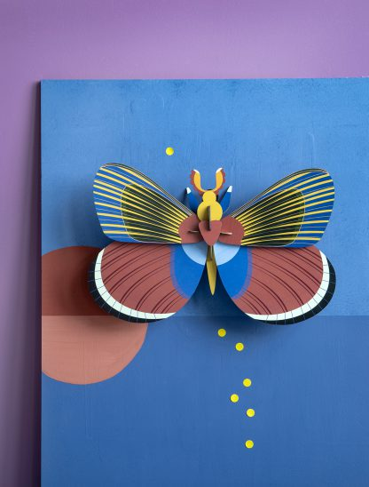 studio roof giant butterfly