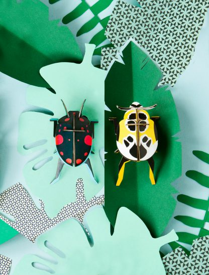studio roof lady beetles 2