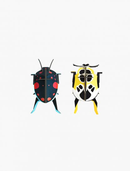 studio roof lady beetles